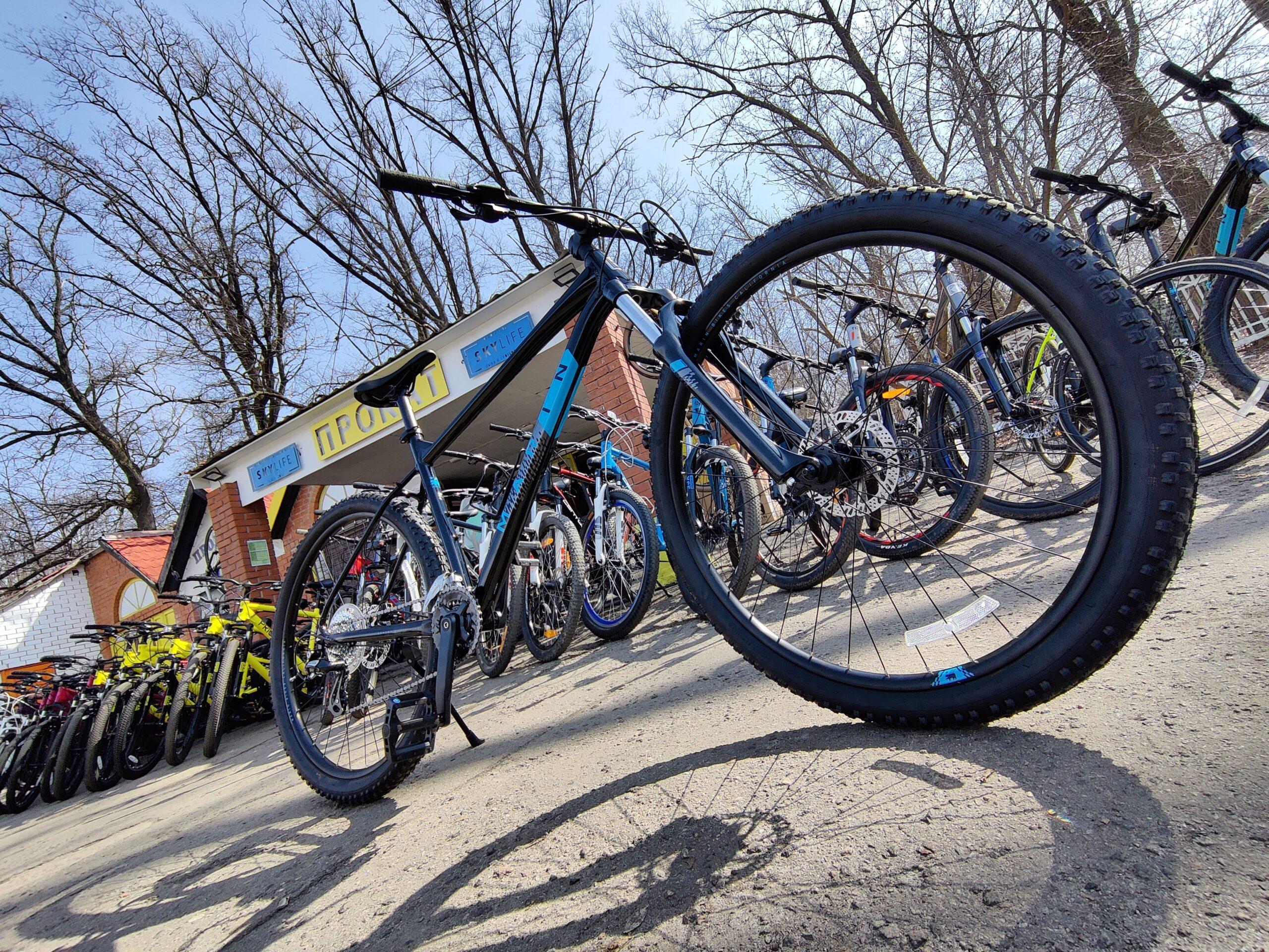 Велосипед 29″ Marin BOBCAT TRAIL 3 (2021) L